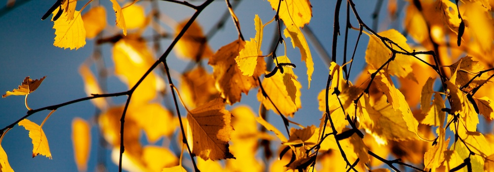 otoño_senderismo