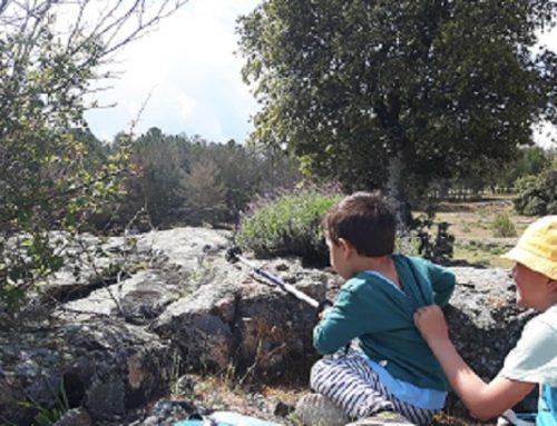 Montes bajos en la Sierra de Guadarrama