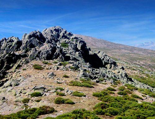 "Ruta ""La Najarra"", senderismo por la Sierra de Guadarrama"