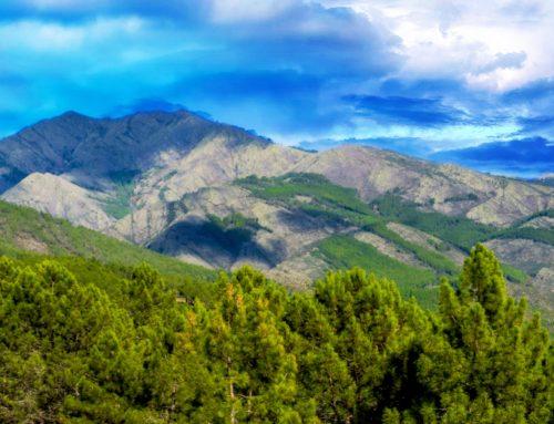 Senderismo por la Sierra de Madrid, Ruta Natural por el Valle del Lozoya