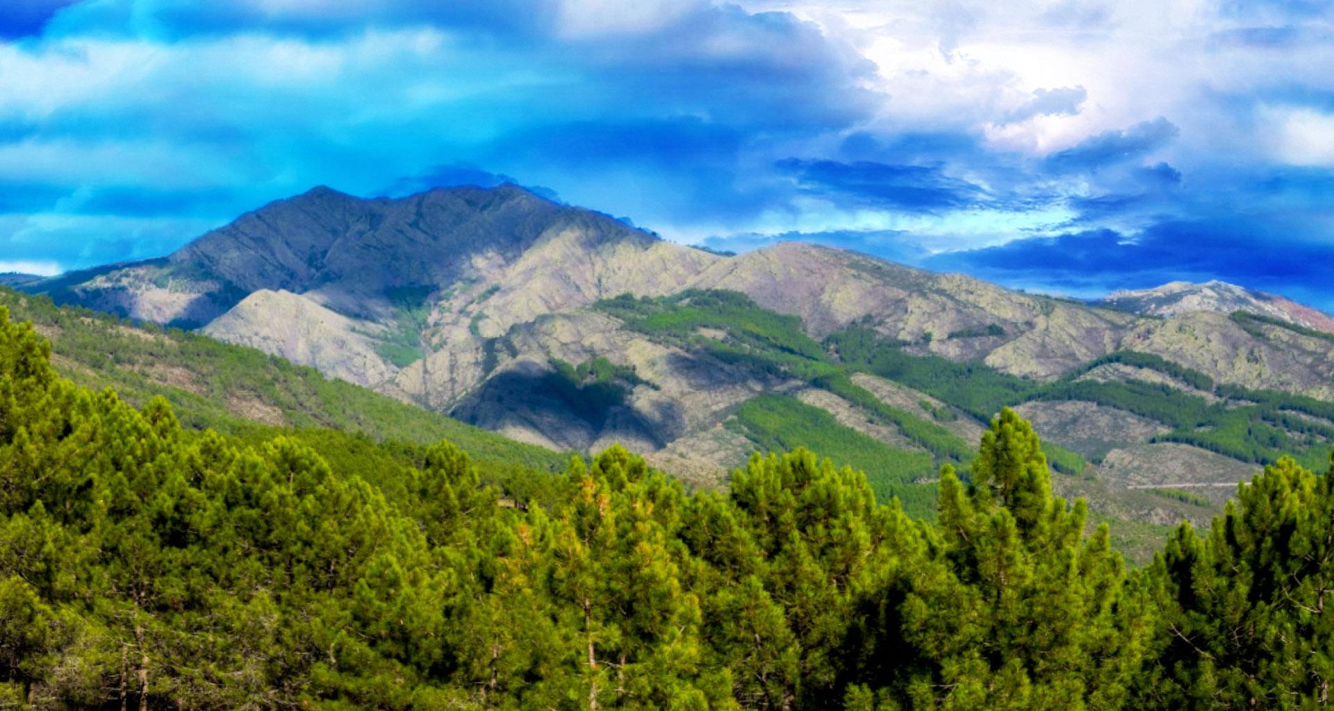 Recorre en su totalidad el valle alto del Lozoya